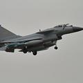 中国の戦闘機「殲10」の同型機=ウィキメディア・コモンズ