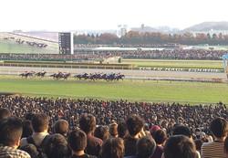 競走除外馬に対する優先出走権の付与について