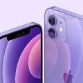 新たなiPhone12カラーにパープルが