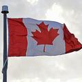 カナダの国旗(2015年7月19日撮影、資料写真)。(c)EVA HAMBACH / AFP