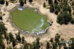 ボツワナのオカバンゴ湿地帯で発見されたゾウの死骸。ナショナル・パーク・レスキュー提供(2020年5月25日撮影、7月3日提供)。(c)AFP PHOTO /NATIONAL PARK RESCUE
