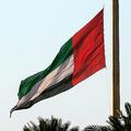 アラブ首長国連邦の国旗。ドバイにて(2006年1月4日撮影、資料写真)。(c)NASSER YOUNES / AFP