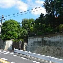 大島 てる 川崎 市