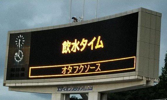 掲示板 j1 総合