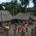 ベネズエラ南部アマゾナス州で、儀式を行う先住民族ヤノマミの人々(2012年9月7日撮影、資料写真)。(c)LEO RAMIREZ / AFP