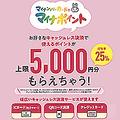 9月1日以降、6カ月間にキャッシュレス決済2万円の利用・チャージで1人につき上限5000円もらえる