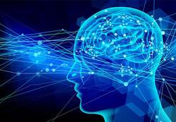 ADHDの脳、皮質の厚さや面積に特徴。検査時間はわずか5分間