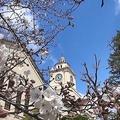 美しいキャンパス