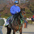 安藤勝己氏「自信の3歳牡馬番付」皐月賞、ダービーの有力馬を検証