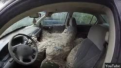 びっくり!車の中にできた大きなスズメバチの巣を発見【映像】