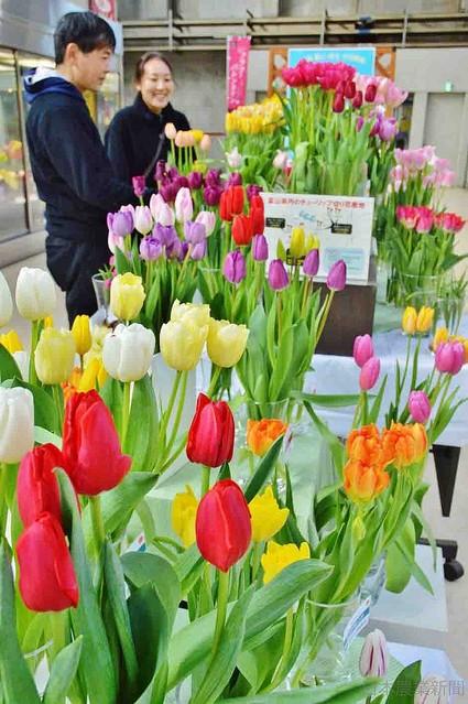 [画像] 「花贈る男子」じわり浸透 「愛妻の日」「フラワーバレンタイン」