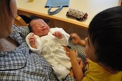 「赤ちゃんはどこから来るのか」「どうやって作るのか」…これらは、子どもが最初に持つ「性への疑問」かもしれません(Yuko/stock.adobe.com)