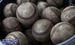 野球 結果 県 高校 神奈川 大会