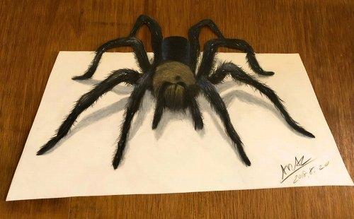 クモや蛇などの色鉛筆イラスト いまにも動き出しそうと話題 ライブドア