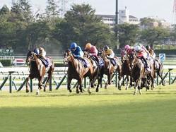 【スプリンターズS】川田「馬の雰囲気は抜群に良かった」レース後ジョッキーコメント