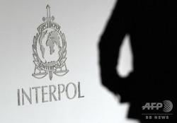 シンガポールの国際刑事警察機構(インターポール)のロゴ(2015年4月13日撮影、資料写真)。(c)ROSLAN RAHMAN / AFP
