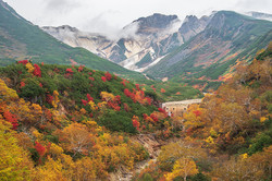 凌雲閣から見渡す紅葉の大パノラマ